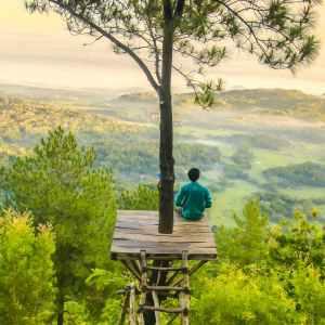 Person meditating on tree platform
