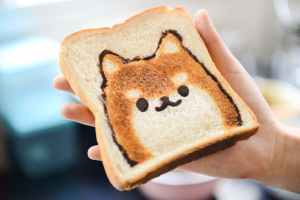 Kitten face depicted on toasted bread.